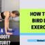 bird-dog-exercise-how-to-do-bird-dog