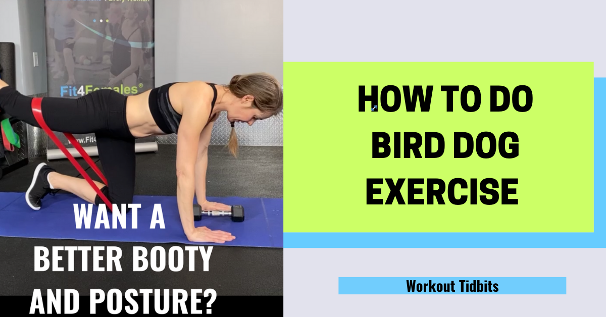 bird-dog-exercise-how-to-do-bird-dog